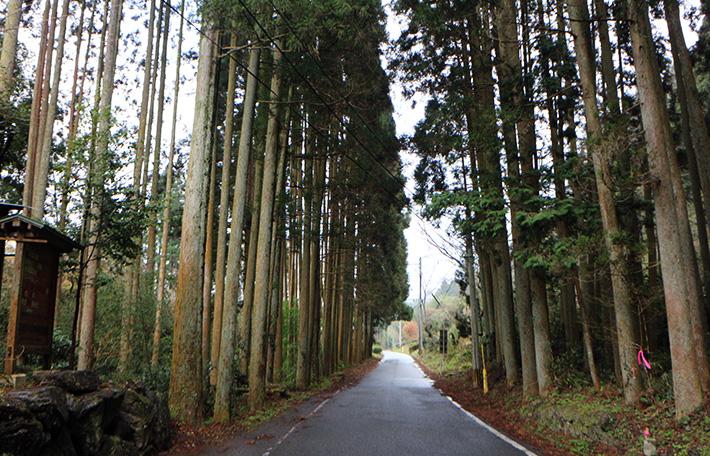 相良氏関連古道|日本で最も豊かな隠れ里 日本遺産人吉球磨【熊本県】